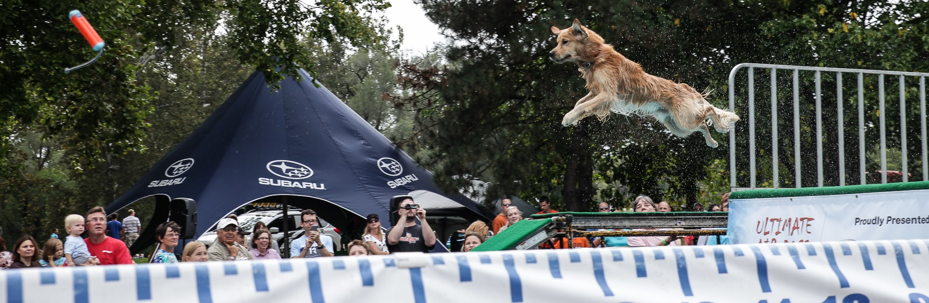 OutdoorX-Competitions-DockDogs